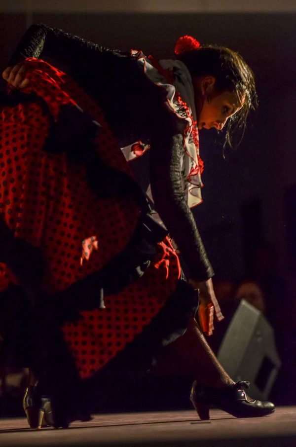 Bailaora del Flamenco Andalusi Sevilla 1