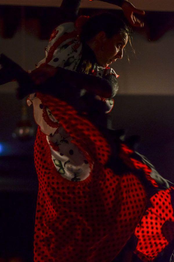 Bailaora del Flamenco Andalusi Sevilla