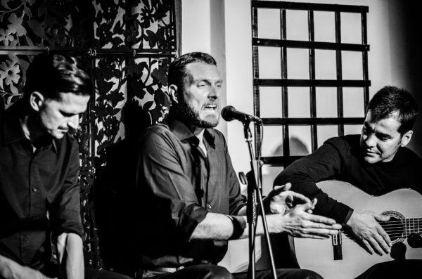 Cante en Flamenco Andalusi Sevilla 3