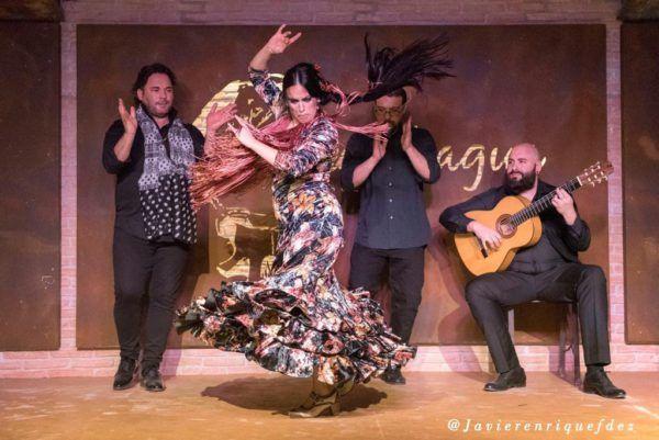 Espectaculo Flamenco La Fragua