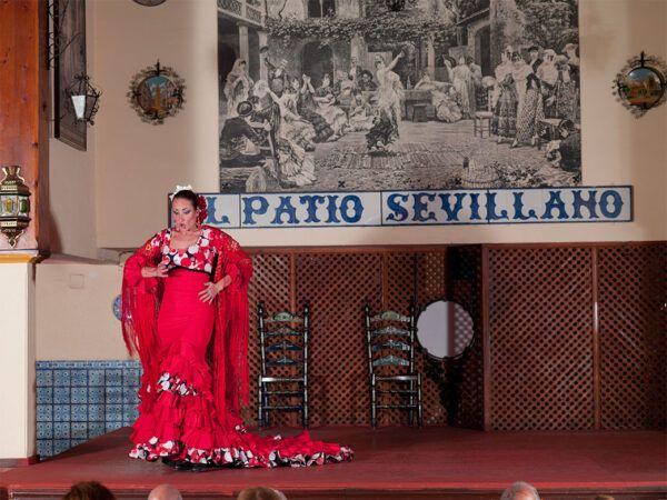 Bailaora en Tablao Flamenco El Patio Sevillano